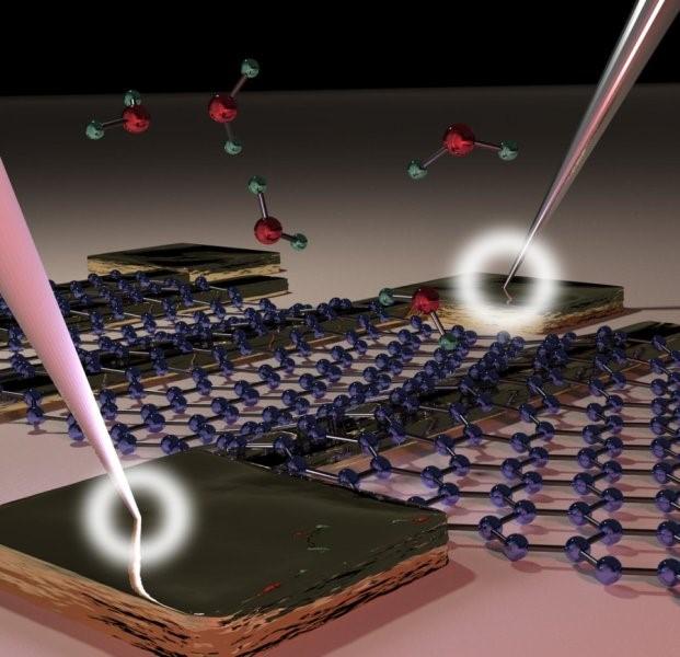 شماتیکی از یک دستگاه گرافنی که با جذب مولکولهای آب بر روی سطح، مقاومت تماسی آن تغییر نکرده است